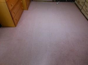 絨毯の和室