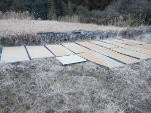 畑に敷いた古畳