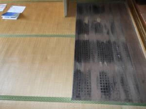 カビが生えた床板