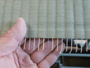 畳表の経糸