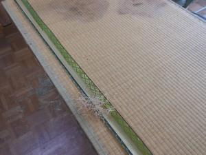 取り去った畳縁