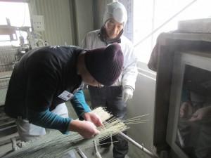 畳表の製織研修