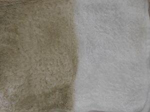 畳の掃除後 濡れ拭き