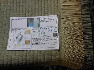 熊本畳表 麻綿ダブル拡大